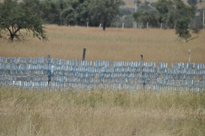 I took this pic in Kenya last summer. Those are discarded water bottle woven into a wire fence. Very creative!